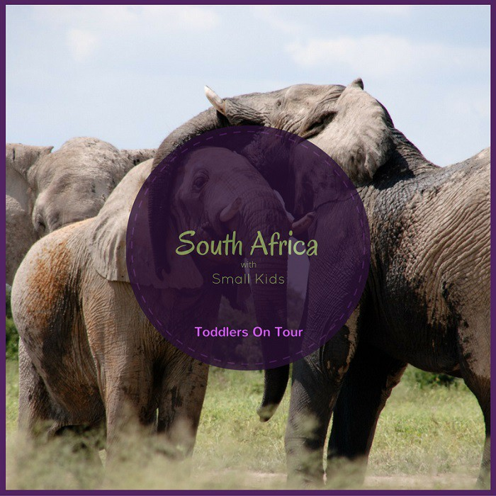 Key Factors For Travelling With Small Children In South Africa Toddlers On Tour